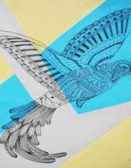 BIRD-1-min