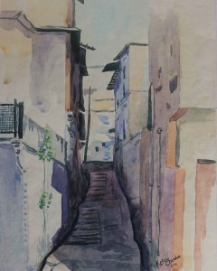 36. STREET OF UDAYPUR