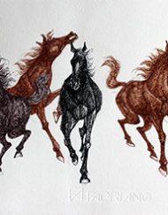GALLOPING HORSES 52