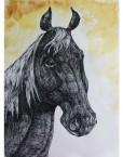 HORSE HEAD 28