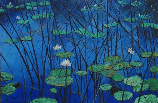 WATER LILY POND 3